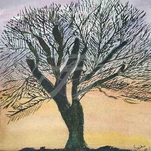 Tree in Sunlight 034